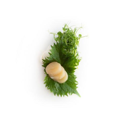 Sashimi Hotate - sushi delivery Nitra