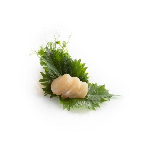 Sashimi Hotate - delivery Nitra