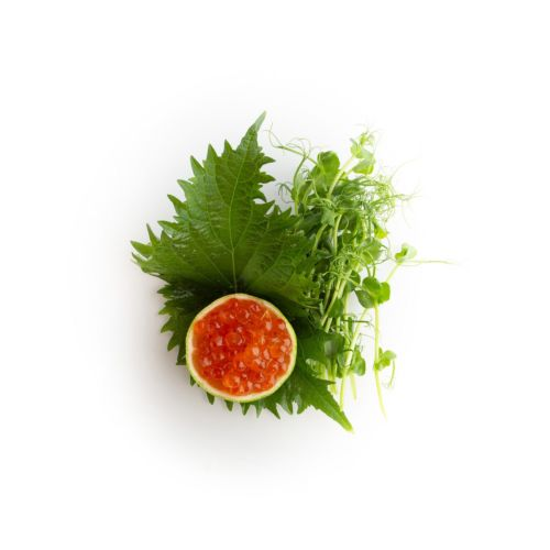 Sashimi ikura - sushi delivery Nitra